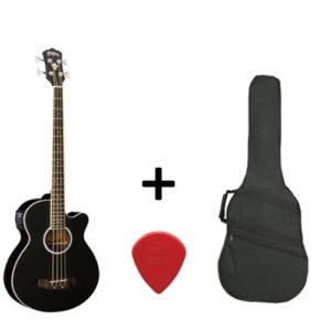 Washburn AB5BK Acoustic Bass, Black